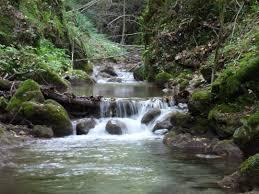Contributi agli enti locali per la realizzazione di interventi per la manutenzione dei corsi d'acqua